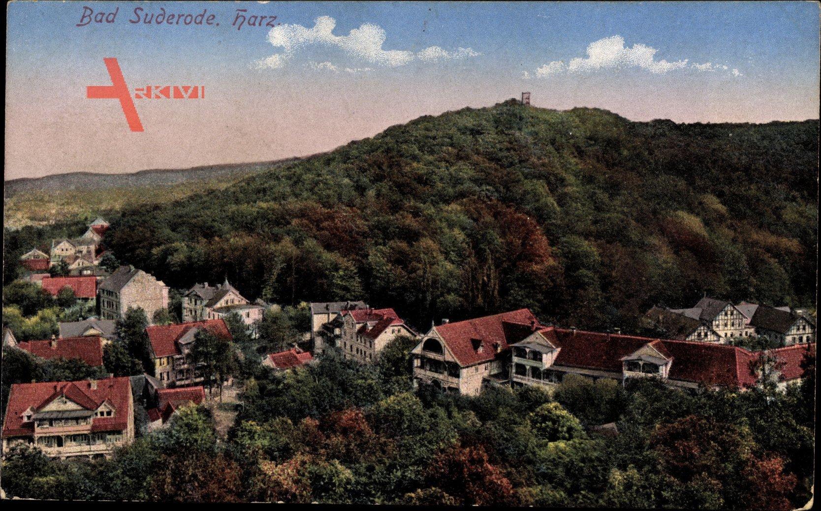 Bad Suderode im Harz, Blick auf den Ort, Berg, Wald, Häuser