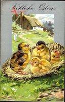 Glückwunsch Ostern, Vier Küken in einem Korb