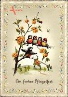 Glückwunsch Pfingsten, Vögel singen auf einem Ast, Kitsch