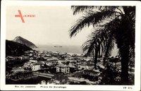 Rio de Janeiro Brasilien, Praia de Botafogo, Palme, Hafenblick, Ort