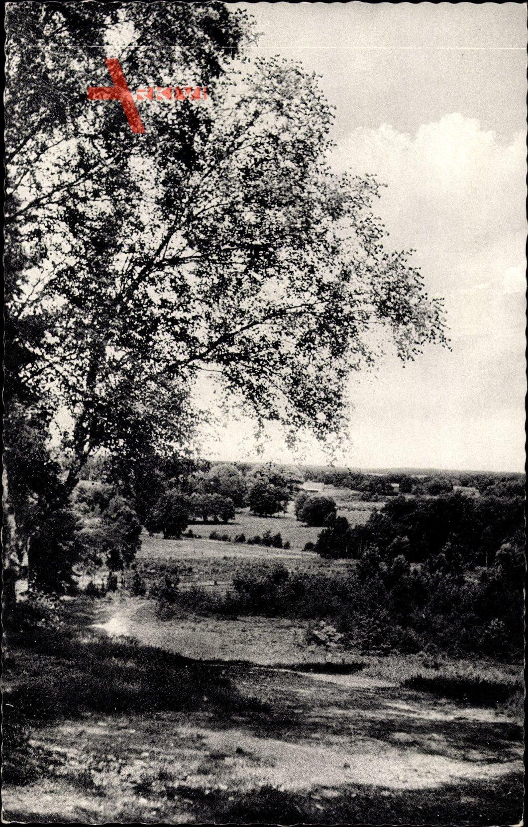 Hösseringen Suderburg Niedersachsen, Blick ins Hardautal, Lüneburger Heide