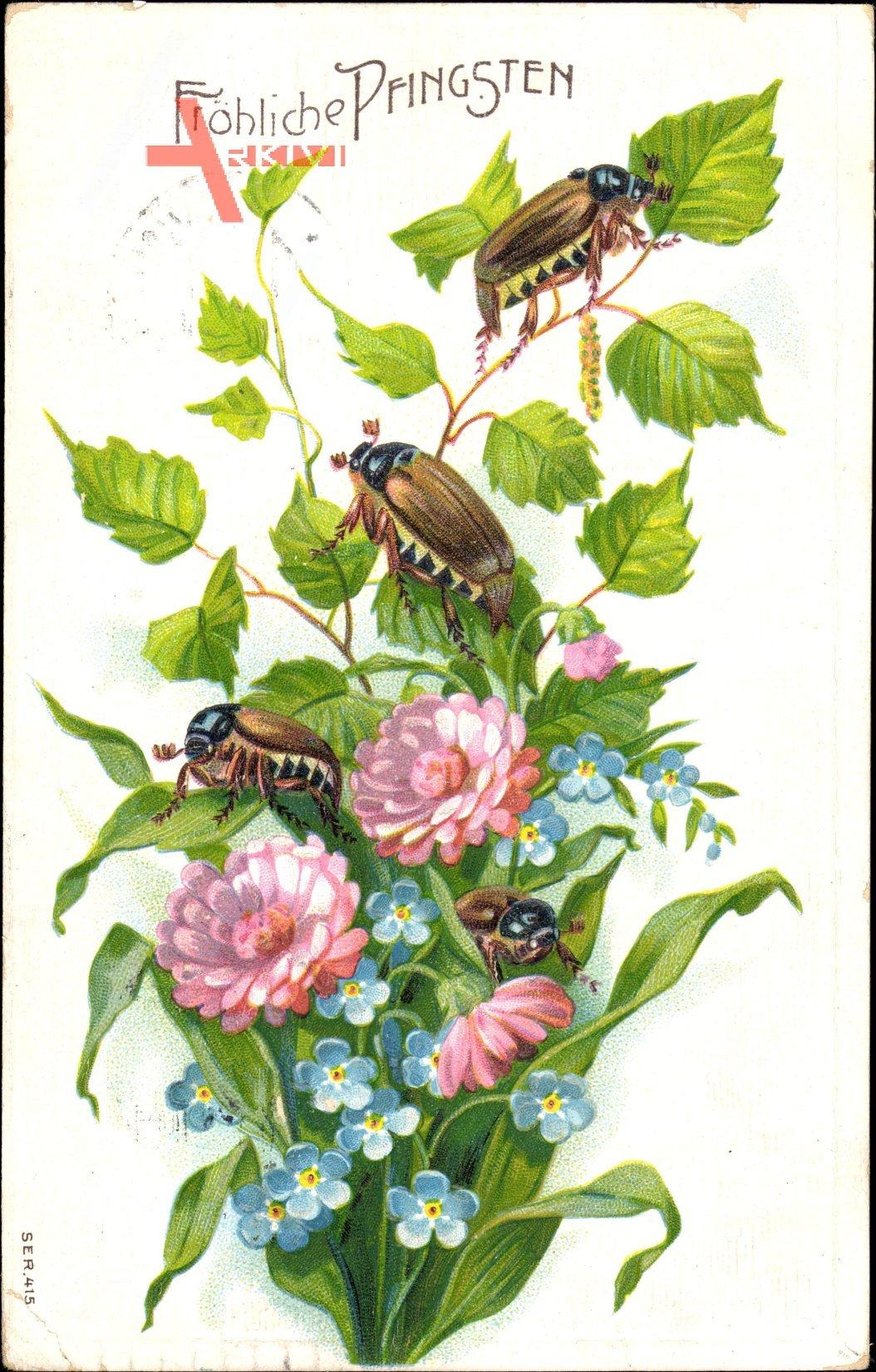 Glückwunsch Pfingsten, Maikäfer auf einem Birkenast, Blumen