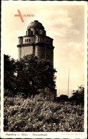 Ingelheim am Rhein, Blick auf den Bismarckturm, Weinstöcke