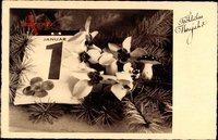 Glückwunsch Neujahr, Kalenderblatt, Fliegenpilze, Kleeblatt, Blüten