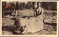 Congo, Tête dhippopotame, Kopf eines Nilpferdes, Jäger