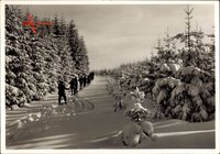 Auf froher Fahrt durch Pulverschnee, Skifahrer, Wintersport