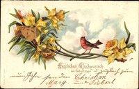 Glückwunsch Geburtstag, Vogel auf einem Ast, Osterglocken