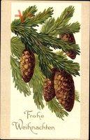 Glückwunsch Weihnachten, Tannenzweige mit Zapfen