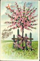 Glückwunsch Pfingsten, Baum mit rosa Blüten, Gartenzaun