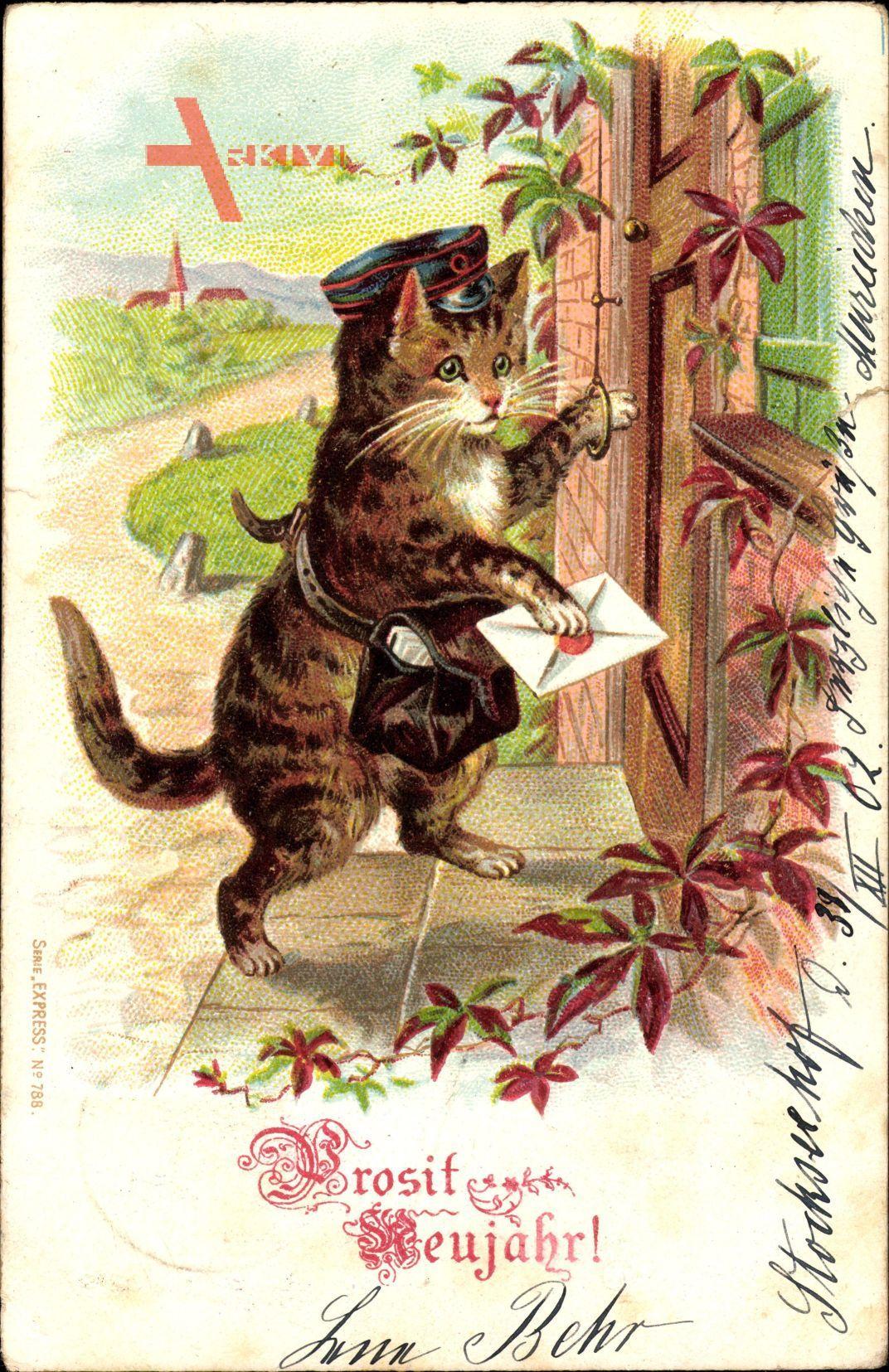 Glückwunsch Neujahr, Hauskatze als Postbote an der Tür