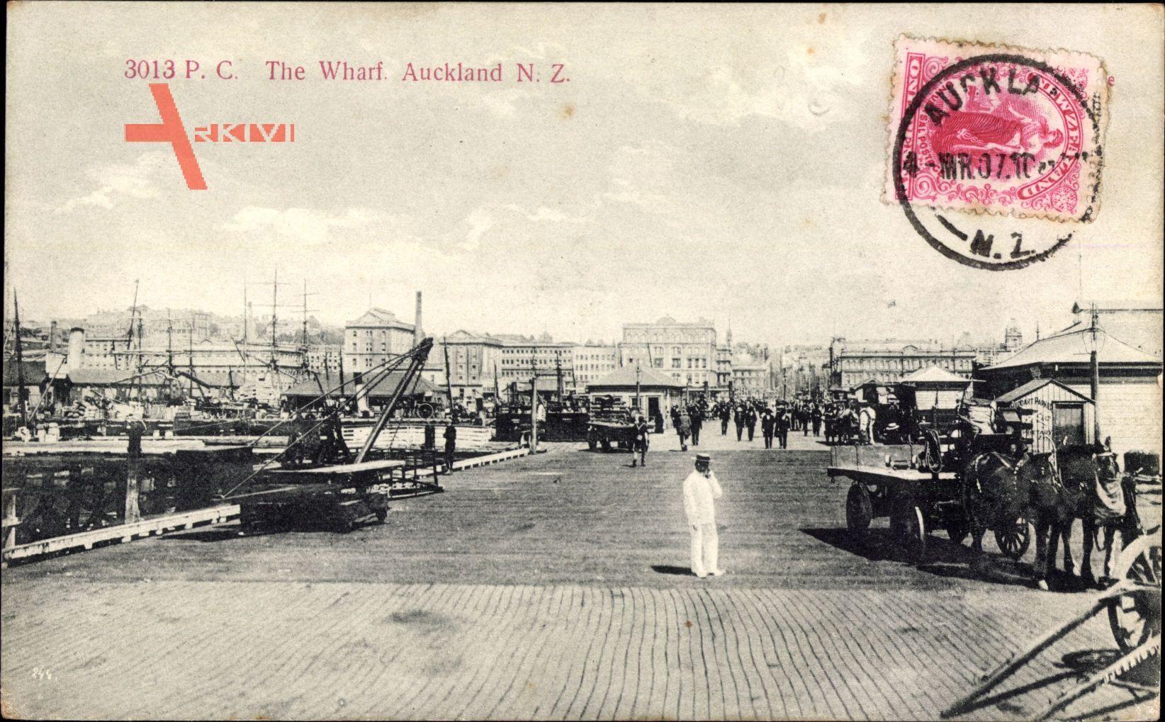 Auckland Neuseeland, The Wharf, Blick in den Hafen, Pferdefuhrwerk