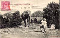 Ceylon, Elephant shooting, Mann schießt auf Elefant, Jagdszene