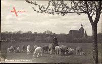 Ośno Lubuskie Drossen Ostbrandenburg, Blick von Norde, Hirte, Kirche