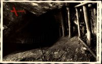 Elbsandsteingebirge, Wolfsschlucht am Hockstein, Hahn 3290