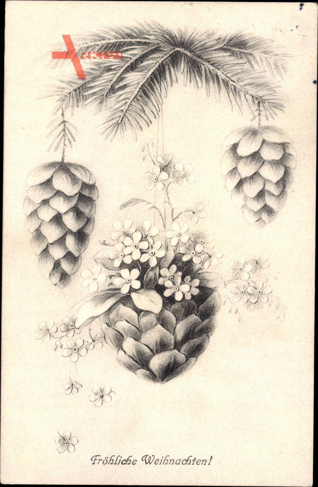 Frohe Weihnachten, Tannenbaum, Tannenzapfen am Zweig