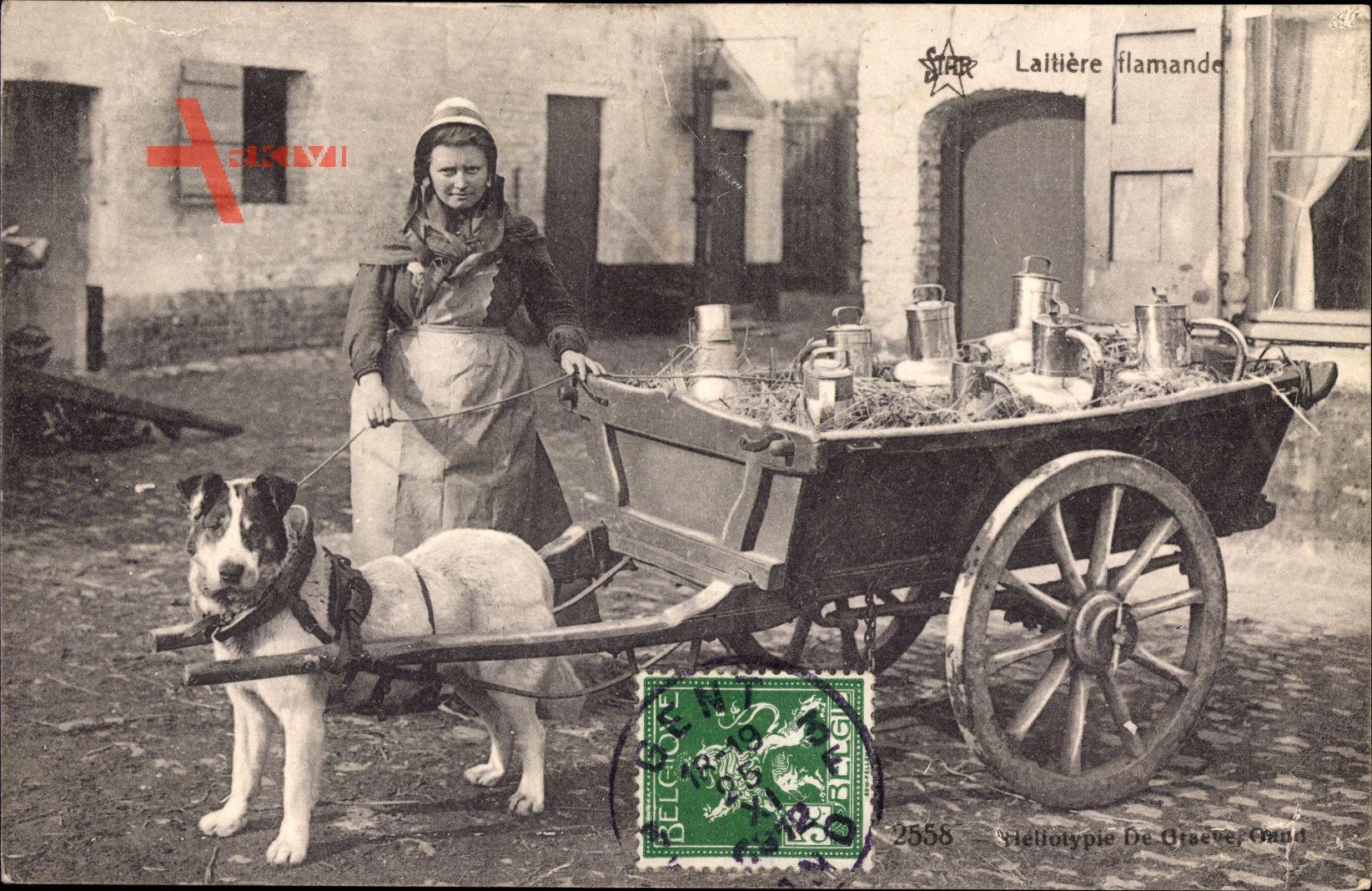 Belgien, Laitière flamande, Flämisches Milchmädchen, Zughund