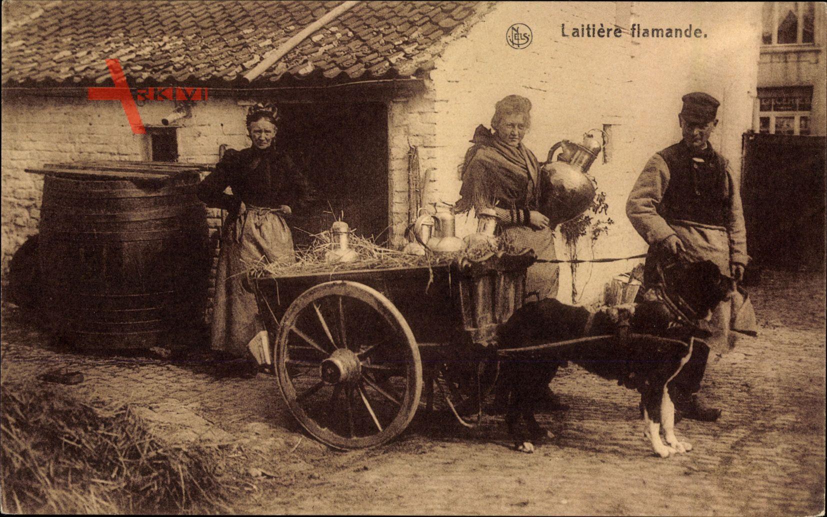 Belgien, Laitières Flamande, Flämische Milchmädchen, Zughund