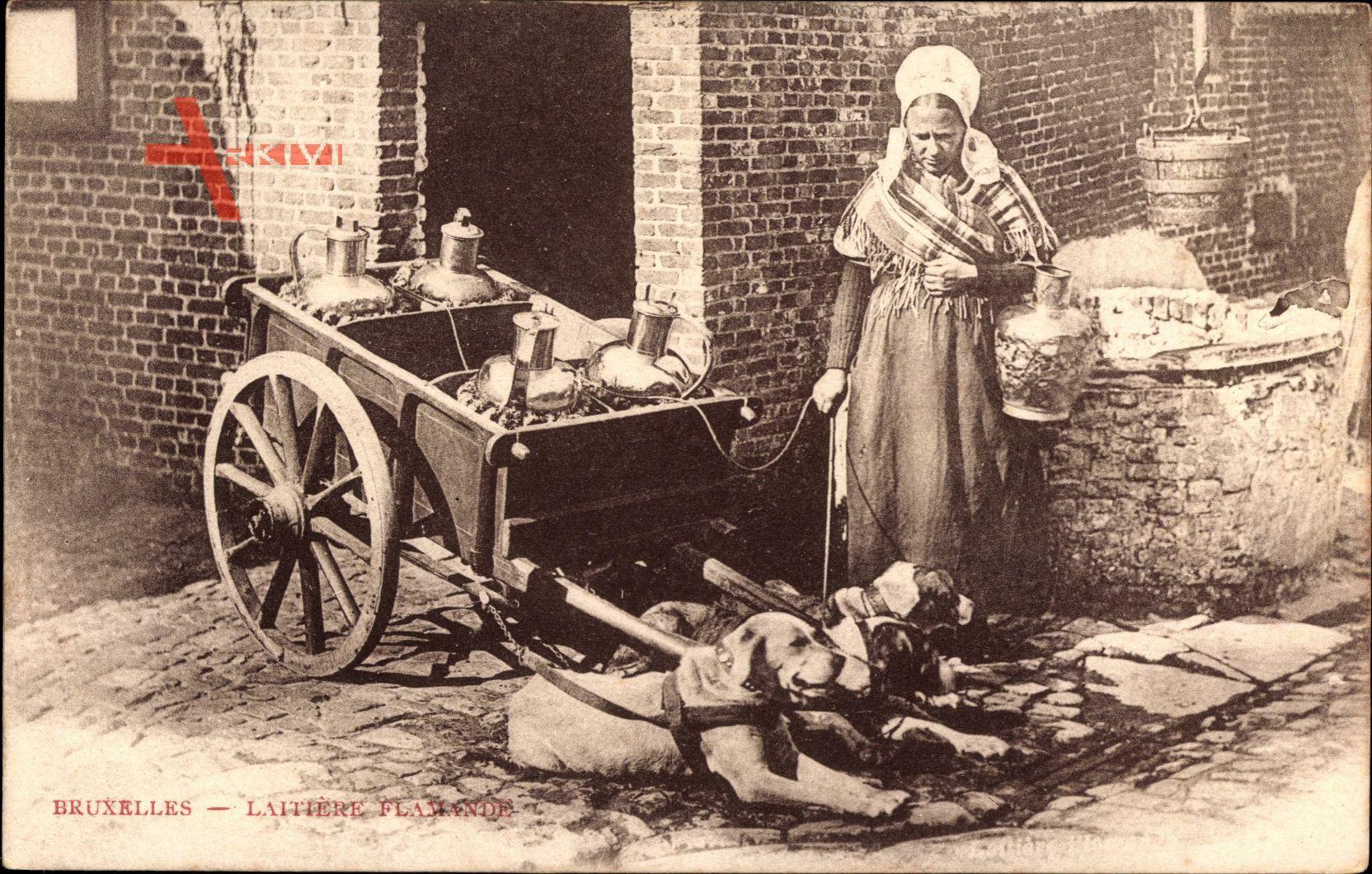 Bruxelles Brüssel, Laitiere Flamande, Milchfrau in belgischer Tracht, Hunde