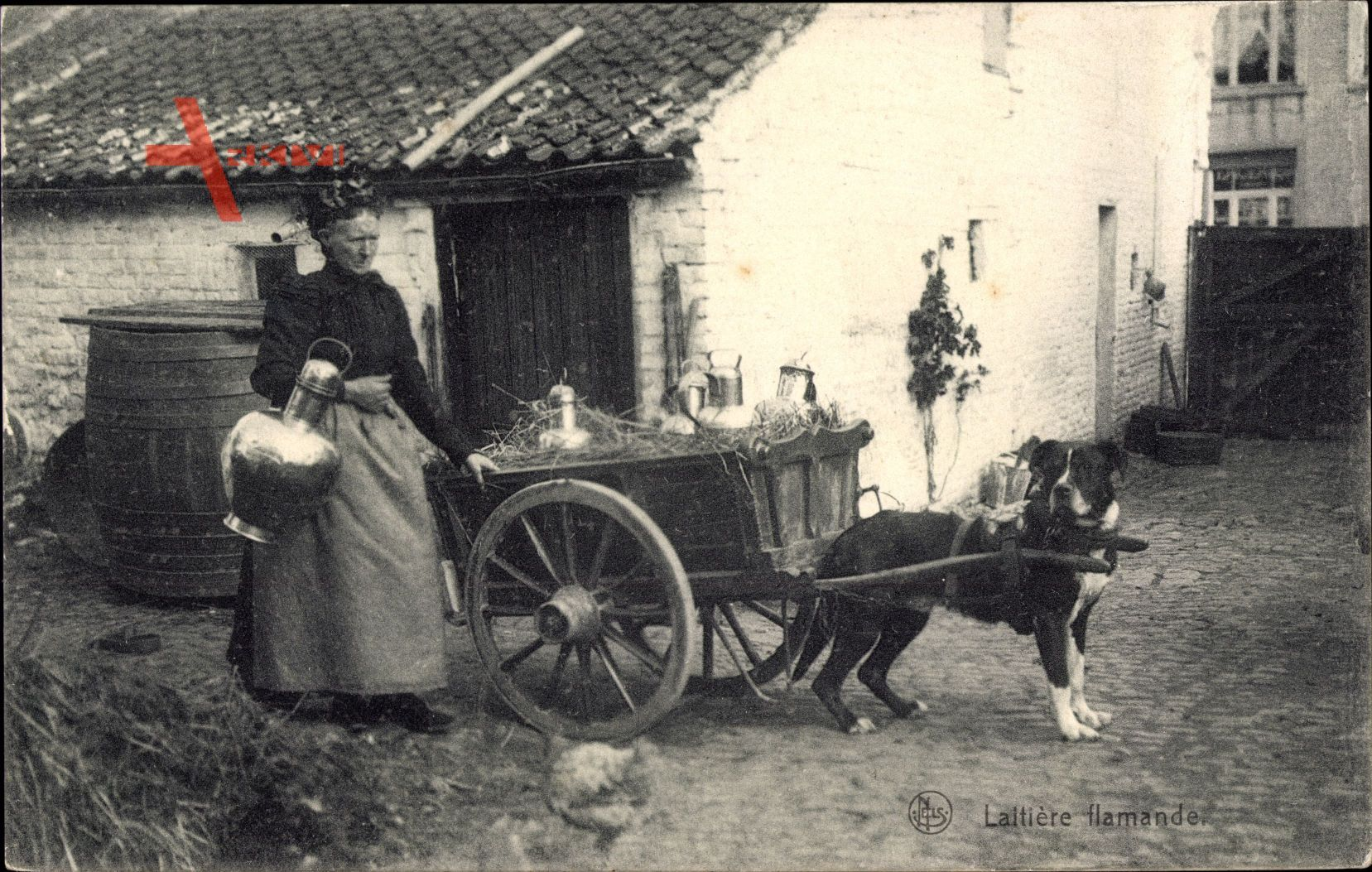 Laitiere flamandde, Milchfrau in Tracht mit Hundekarren, Milchkanne