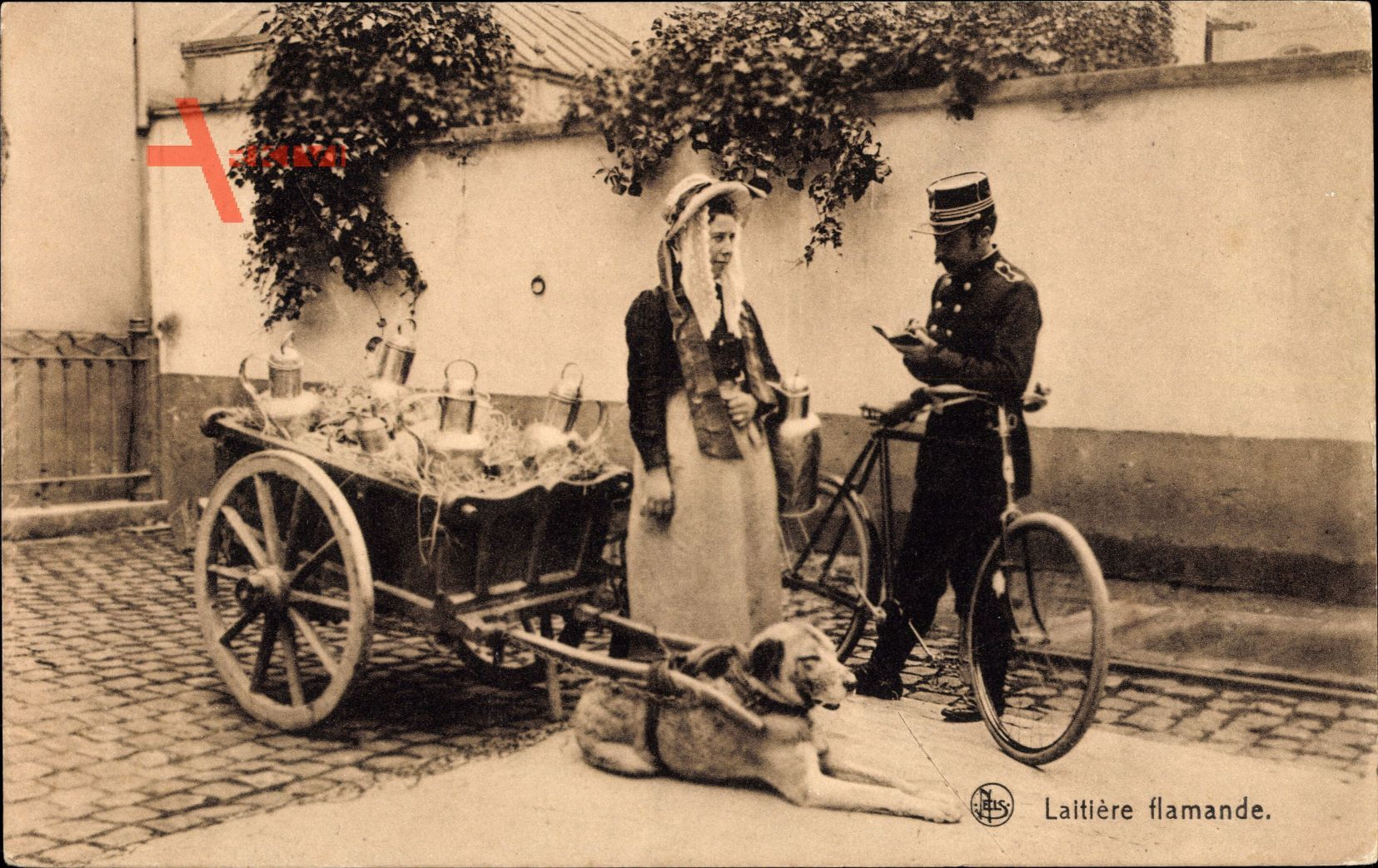 Laitiere flamande, Briefträger mit Fahrrad, Hundekarren, Milchfrau in Tracht