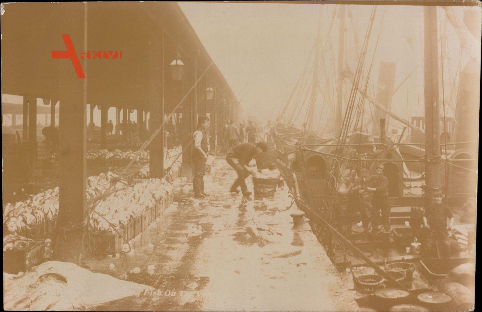 England, Hafen, Verladen von Fanggut, Fischer bei der Arbeit