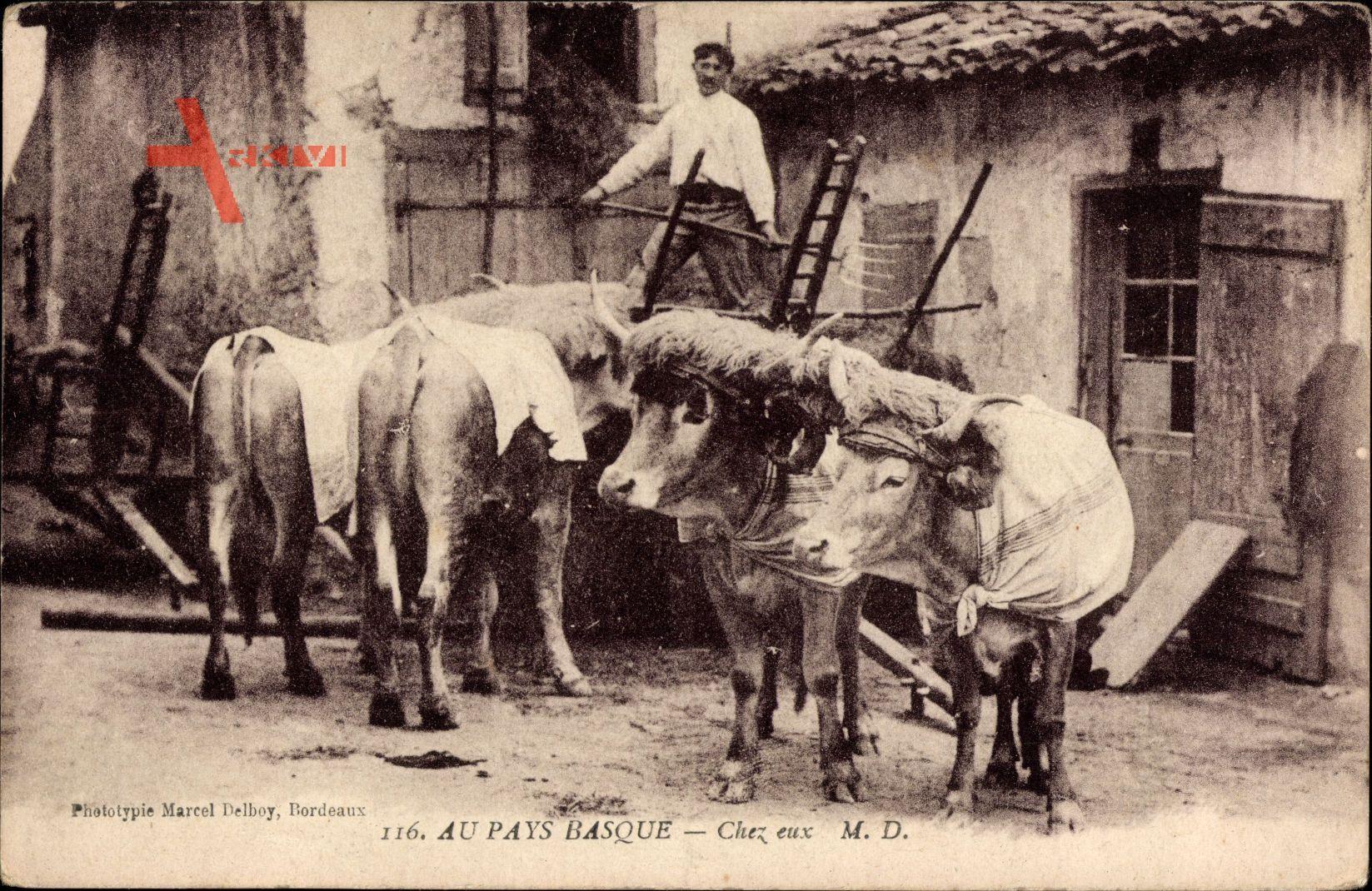 Au Pays Basque, Chez eux, Baskenland, Landwirt, Bauernhof, Kühe