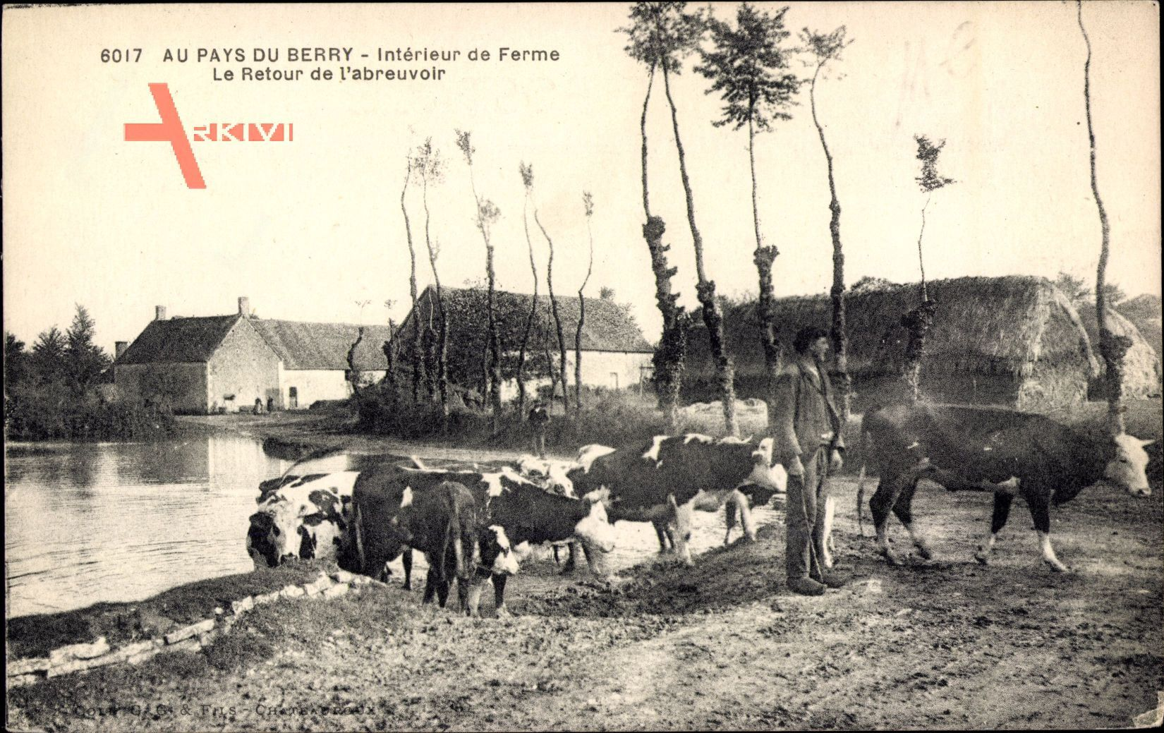 Au Pays du Berry, Intérieur de Ferme, Le Retour de labreuvoir