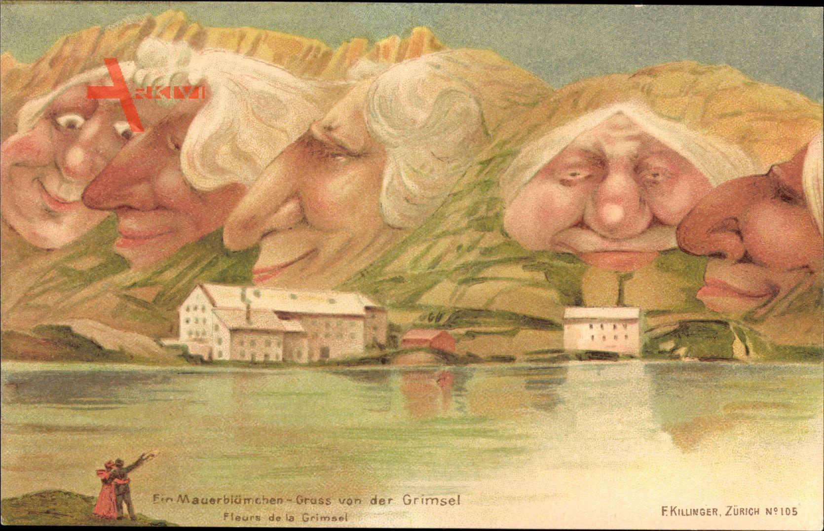 Ein Mauerblümchen, Grimsel, Berggesichter, Killinger No 105