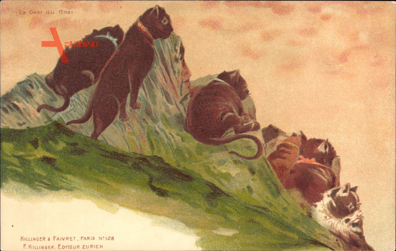 Le Dent du Chat, Berggesichter, Katzen, Killinger No 128