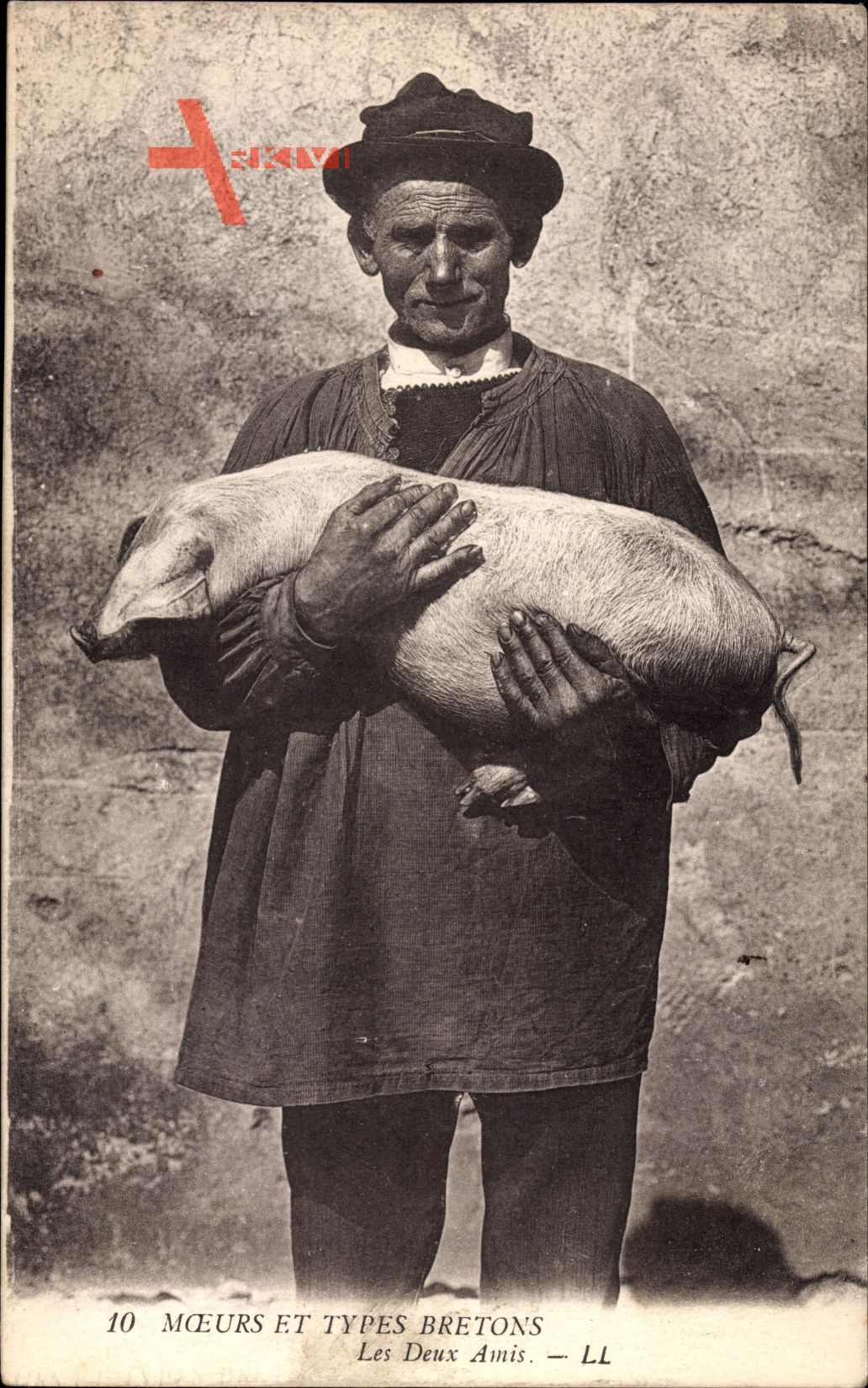 Moeurs et Types Bretons, Les Deux Amis, Landwirt mit Schwein