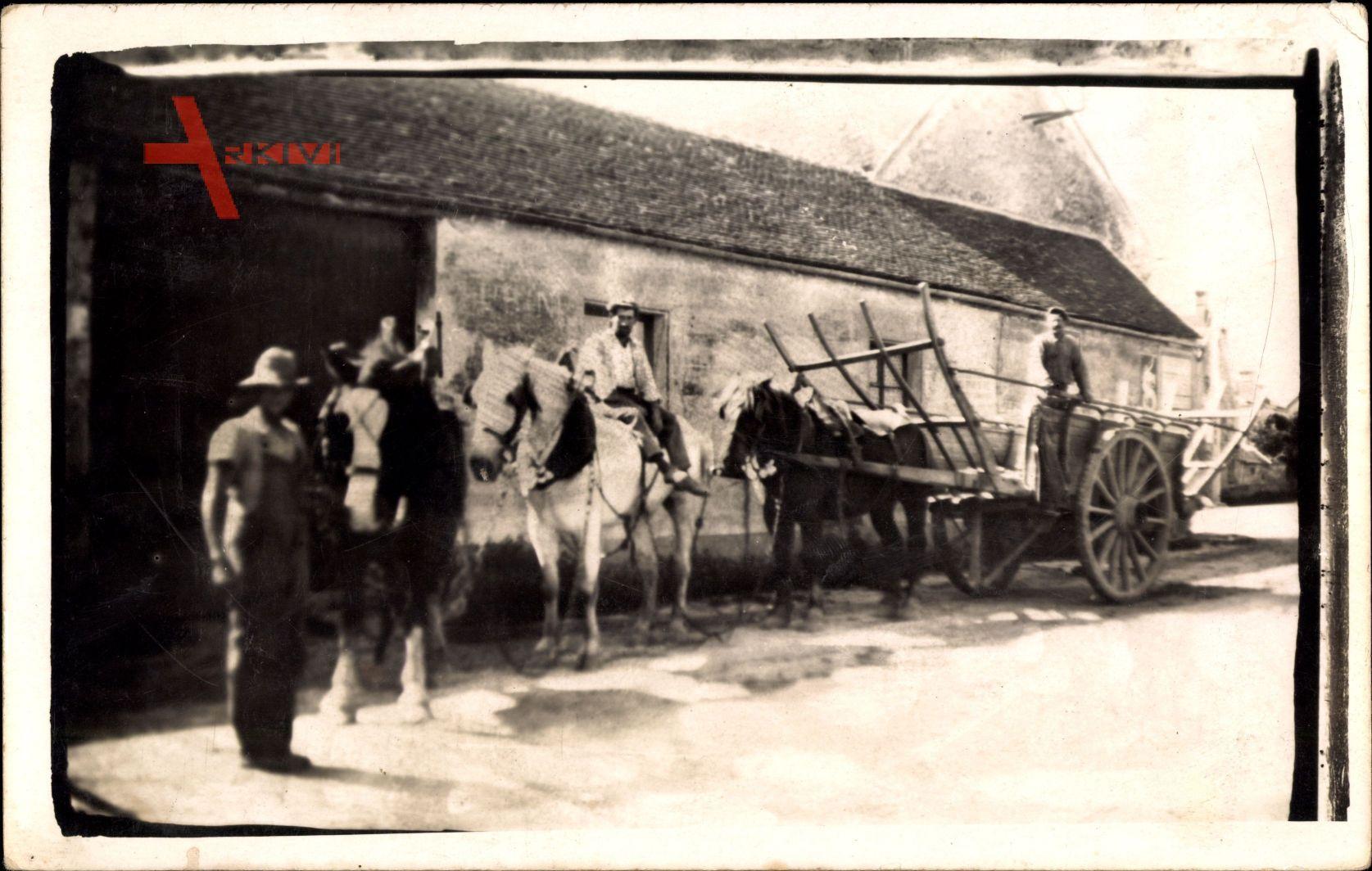 Frankreich, Bauernhof, Pferdekarren, Scheune
