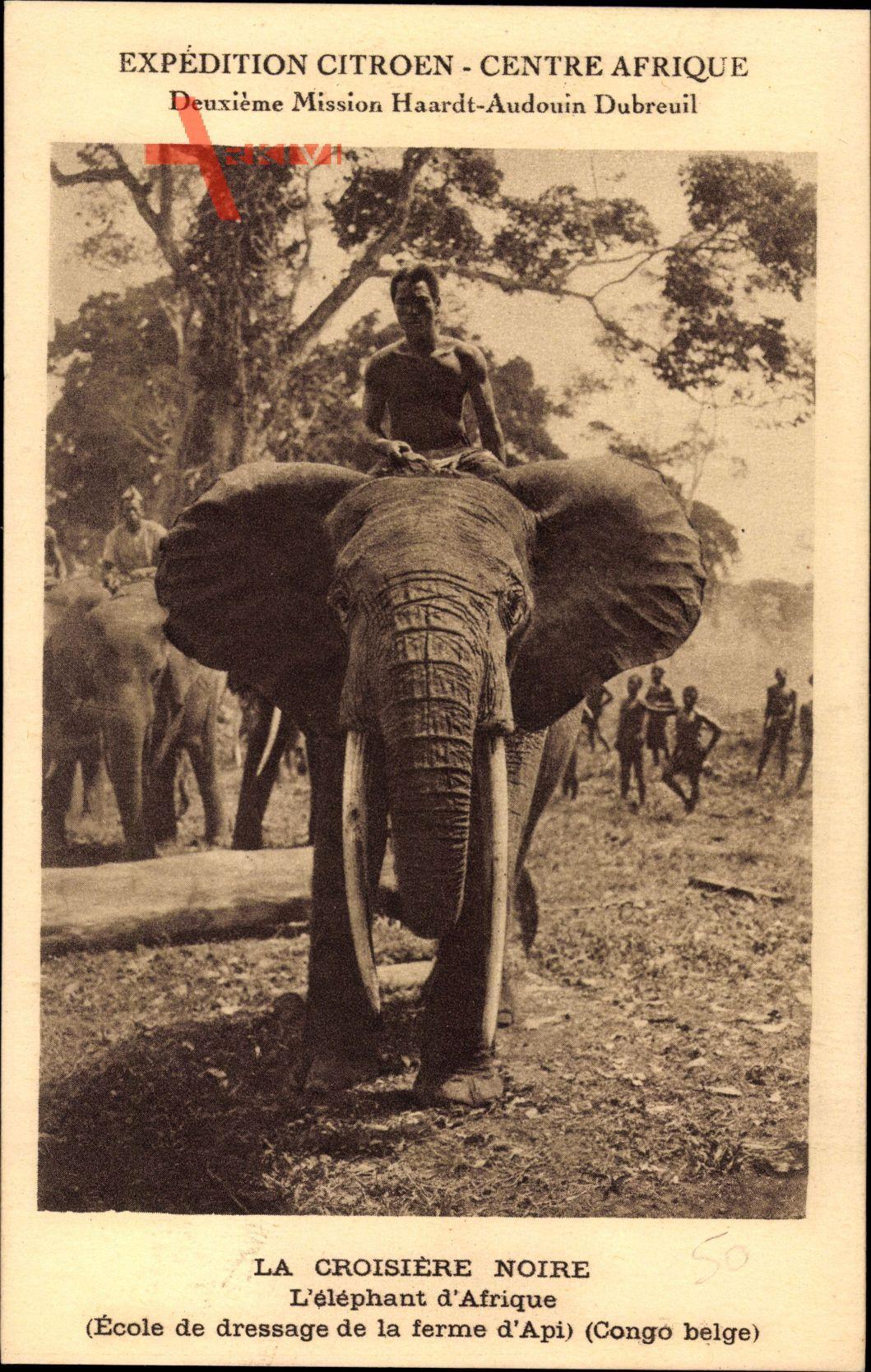 Demo. Rep. Kongo Zaire, Expédition Citroen, Elefant, Croisière Noire