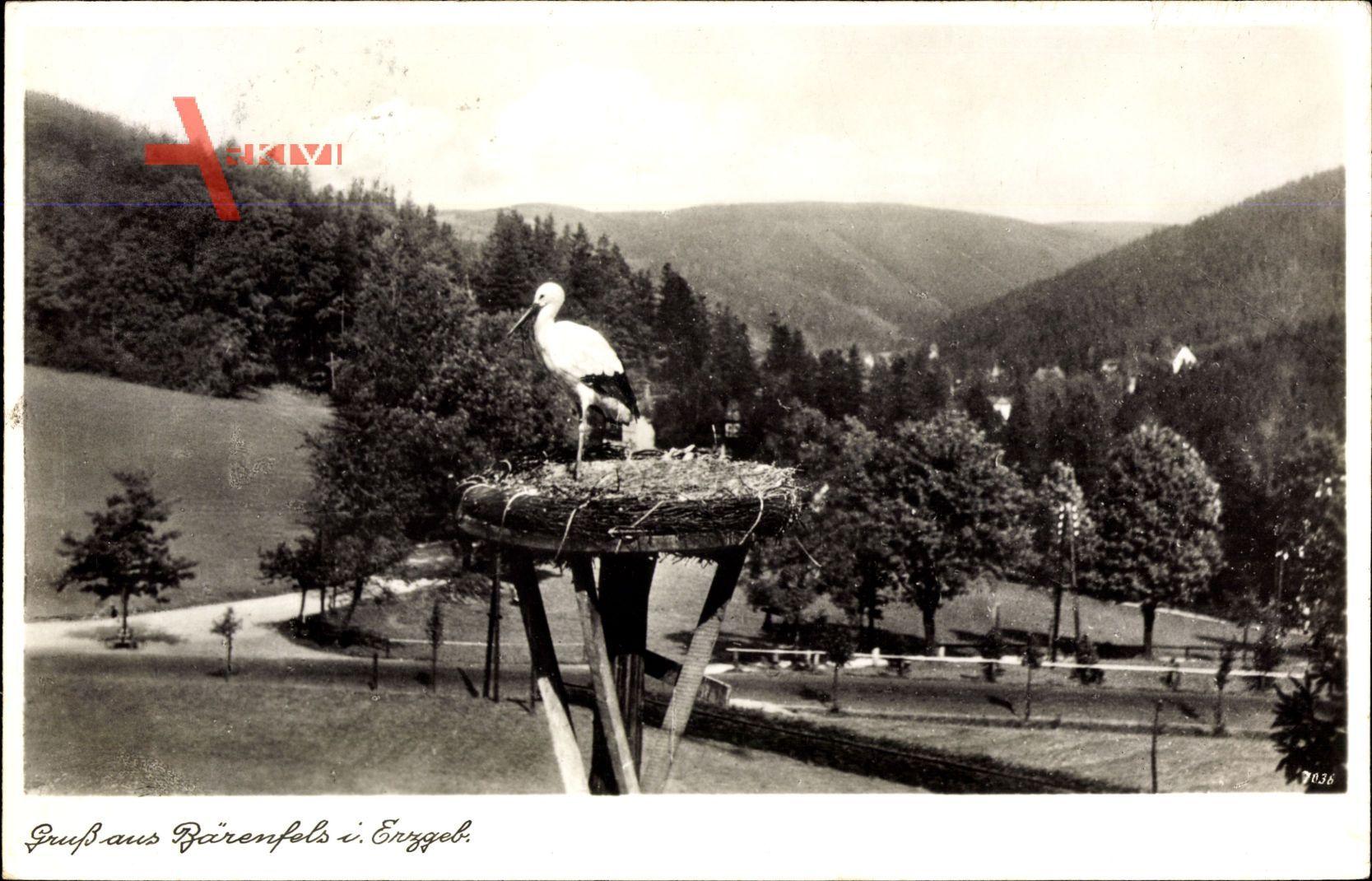 Bärenfels Altenberg im Erzgebirge, Blick auf ein Storchennest, Stengel