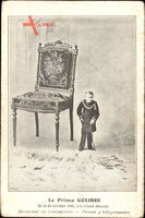 Le Prince Colibri, Ne le 20 Octobre 1883 a Levland, Russie, 62 centimetres