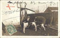 Frankreich, Zwei Männer mit Jagdhunden auf dem Hof