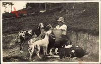 Frankreich, Hundefütterung, Landwirt, Eimer, Doggen