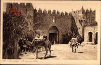 Jerusalem Israel, Damascus gate, Blick auf das Damaskus Tor, Kamel