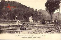 Tonkin Vietnam, Missionare bei der Forstarbeit, Vietnamesen