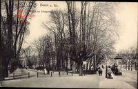 Bonn in Nordrhein Westfalen, Partie im Hofgarten im Herbst