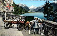 Flüelen Kt. Uri Schweiz, St. Bernhard Zwinger, Bernhardiner, Hunde