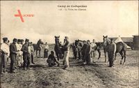 Camp de Coëtquidan Morbihan, La Visite des Chevaux, Pferde, Soldaten