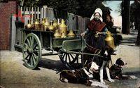 Belgien, Laitière Flamande, Flämisches Milchmädchen, Zughunde