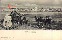 Tunis Tunesien, Blick auf die Stadt, Moschee, Kamele