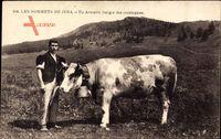 Les Sommets du Jura, un Armailli, berger des montagnes, Rind mit Glocke