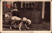 Spakenburg Bunschoten Niederlande, Hundekarren, Mädchen in Tracht