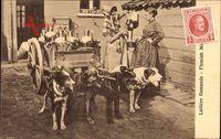 Laitiere flamande, Milchfrauen in Tracht mit Hundekarren, Milchkanne