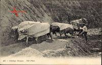 Attelage Basque, Ochsenkarren steckt im Sandboden fest