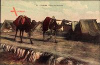 Tanger Marokko, Camp de Nomades, Blick auf ein Nomadencamp, Kamele