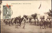 Casablanca Marokko, Entree de lAviation, Eingang zum Flugplatz, Kamel