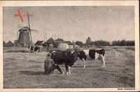 Niederlande, Mooi Nederland, Windmühle, Bauer melkt Kuh